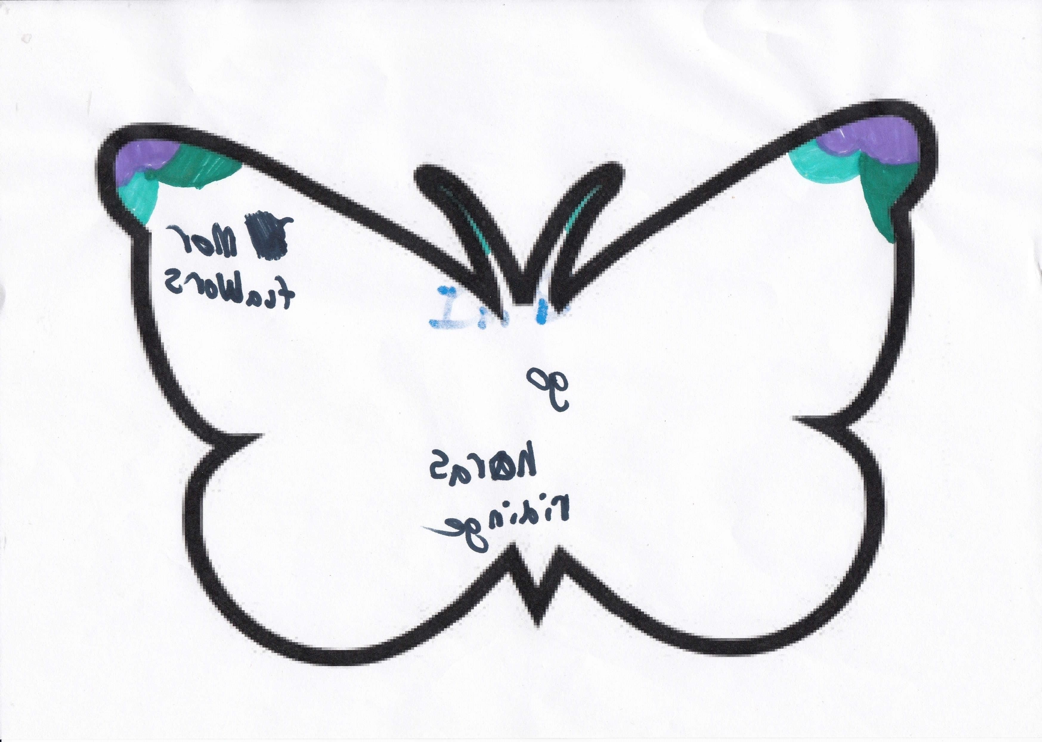 Buttefly 4